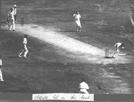 Bert Oldfield hit on the head - bowled Harold
